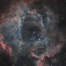 Rosette Nebula,                                Chris Parfett @astro_addiction