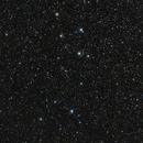 Pure Delphinus,                                AstroHannes68
