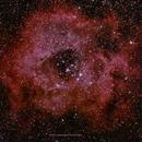 NGC2237 Rosette Nebula,                                brad_burgess