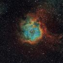 NGC 2237,                                VM