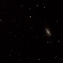 NGC 2903,                                T L Samuels