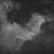 NGC5070 The Wall of Cygnus,                                Roger Muro