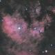 NGC 7822,                                Kathy Walker