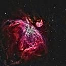 Great Orion Nebula,                                Shailesh Trivedi