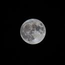 Harvest moon,                                Maria