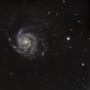 M101 12 hours,                                cguvn