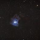 Iris Nebula  NGC 7023,                                Richard Vanderbeek