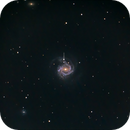 Messier 61 and its supernova SN 2020jfo at a distance of 52 million light years.,                                Mark Sansom