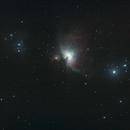 M42 Orion Nebula,                                Rob Ward