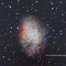 M1 Crab Nebula in RGB,                                David Newbury