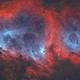 IC 1848 •Soul Nebula (Westerhout 5) in HOO,                                Douglas J Struble