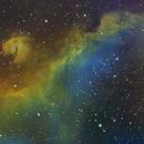 IC 2177 - Seagull Nebula - SHO,                    Edward Overstreet
