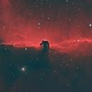 IC 434 - Pferdekopfnebel in Bi-Color,                                Michael Schröder