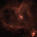 Heart Nebula (IC1805),                                  Alain POYVRE