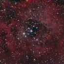 NGC 2244,                    Joerg Meier