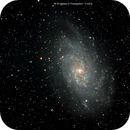 M33,                                Fred