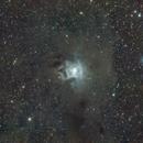 Iris Nebula,                                Robert Q. Kimball