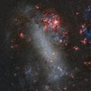 Large Magellanic Cloud (HaRGB),                                Leonel Padron