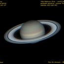 Saturno em 10 de maio,                                Oliveira