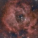 The Rosetta Nebula, peterdunsby