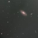 M88,                                Alex Vukasin