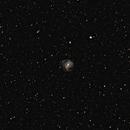 M83 - Southern Pinwheel Galaxy,                                Wellerson Lopes