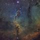 IC1396 the Elephant Trunk Nebula,                                Jeremy Jonkman