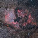 NGC 7000 - First Light,                                AstRobert