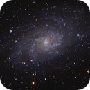 M33, Triangulum galaxy,                                Mike Carroll