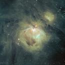 M42 Orion Nebula,                                Chris Howard