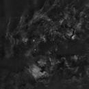 Cygnus widefield 15 panel mosaic,                                Ola Skarpen SkyEyE