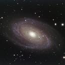 M81 - RGB - new processsing,                                Rodolphe Goldsztejn