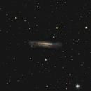 NGC 3728 - Hamburger galaxy,                                Maël BORDERIE