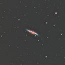 M82 Cigar Galaxy,                                dennis1951