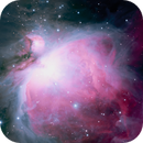 Messier 42 - Orion Nebula,                                Eric Walden