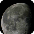 81% Moon,                                Moguest
