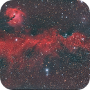Ngc 2177 Seagul Nebula,                                Alessandro Curci