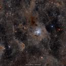 Cepheus Molecular Cloud, with the Iris Nebula,                                Maroun Habib