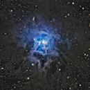 Iris Nebula - NGC 7023,                                Bob Gillette