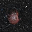 NGC 2174 - Monkey Head Nebula,                                Felix