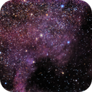 North American Nebula,                                Chris Bagley