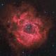 Rosette Nebula,                                Nick Smith