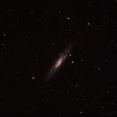 NGC 253,                                Patrick de Koster