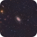 NGC 4725,                                Kathy Walker