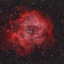 The Rosette Nebula,                                NorbertN