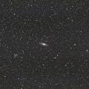 NGC 7331 (Deer Lick Group),                                Brian Sweeney