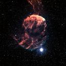 Jellyfish with star Eta Geminorum,                                Kurt Bozkurt