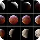 Total Lunar Eclipse Sequence  2019,                                alphaastro (Rüdiger)