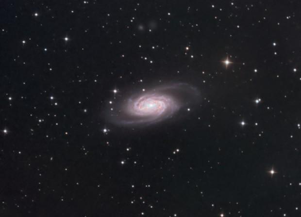 NGC 2903,                                Anne-Maree McComb