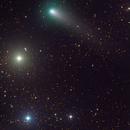 cometa 21P (G-Z),                    Rolando Ligustri